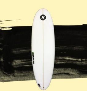 tabla de surf egg